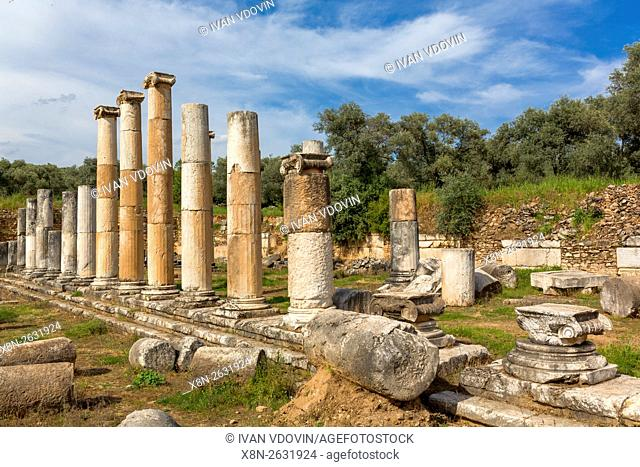 Ruins of ancient Nysa on the Maeander, Aydin Province, Turkey