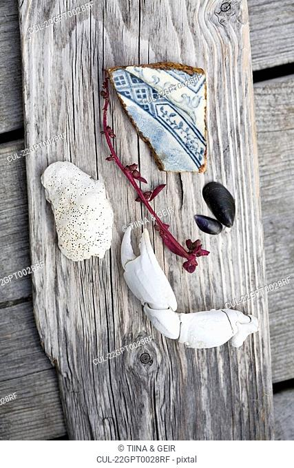 Beach combing objects on plank of wood