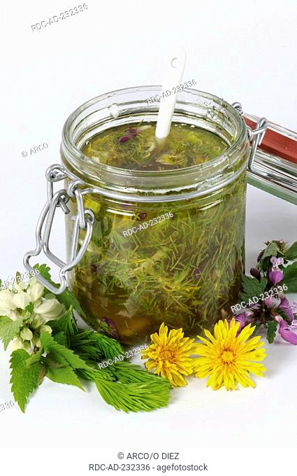 Production of blossom honey with Common Spruce, Common Dandelion, Spotted Dead-nettle and White Dead-nettle, Picea abies, Taraxacum officinale