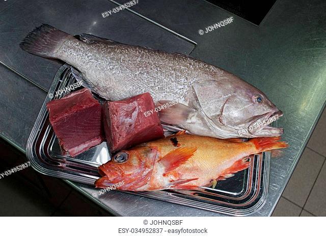 fresh seafood dorado and tuna