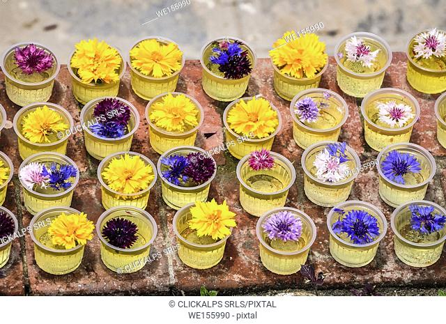 Offers of flowers,Bouddhanath,Kathmandu, Nepal,Asia