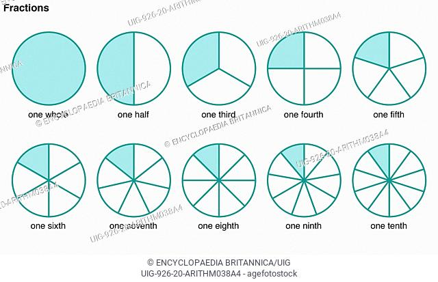 Circles divided into portions to illustrate the following fractions, one whole, one half, one third, one fourth, one fifth, one sixth, one seventh, one eighth
