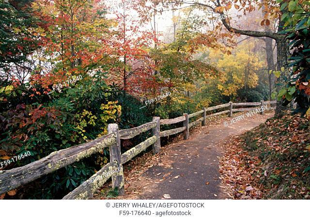 Fence and path, Cataloochee Cove. Great Smoky Mountains NP. North Carolina. USA