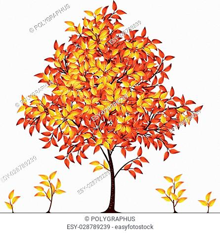 Autumn tree. Eps8. CMYK. Global colors. Gradients used