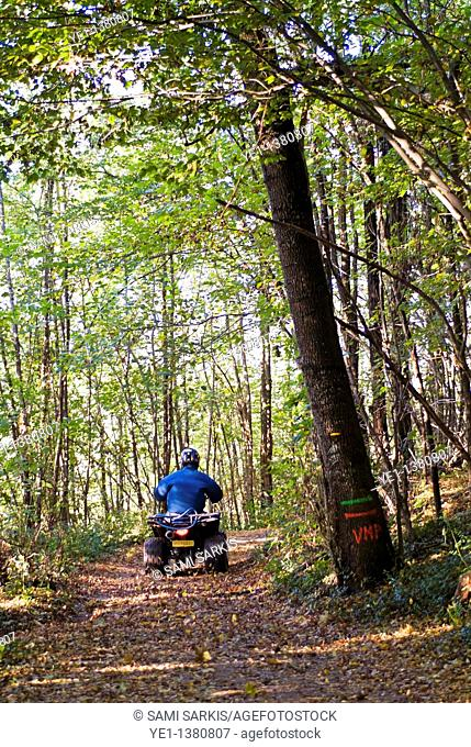 Person riding alone on a quad bike through a forest during autumn, France