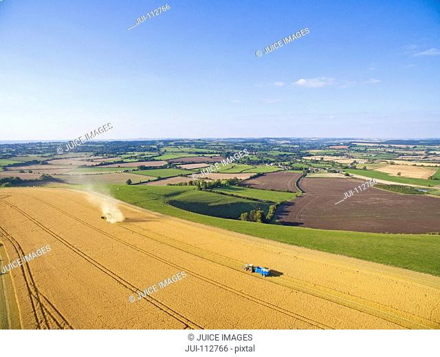 Scenic aerial landscape view of combine harvester and tractor trailer in sunny barley field