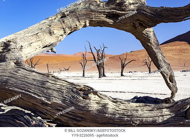 Deadvlei Landscape in Namib-Naukluft National Park, Namibia, Africa
