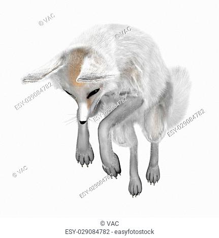 3D rendering of a fennec fox isolated on white background