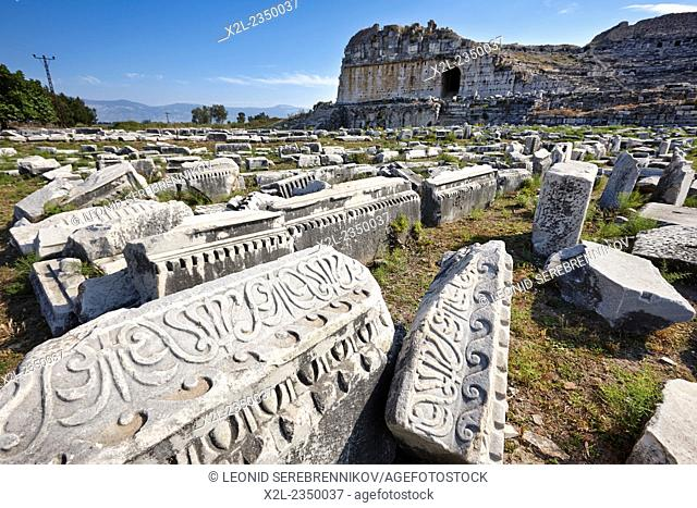 Ruins of the ancient city of Miletus. Aydin Province, Turkey
