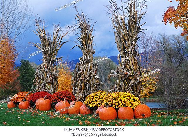 Autumn decor highlights a roadside farm in New England