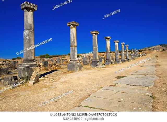 Volubilis, Mulay Idris, Meknes, Roman ruins of Volubilis, UNESCO World Heritage Site, Morocco, Maghreb, North Africa