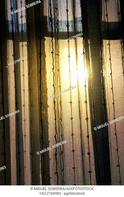 Morning Light Through Curtains