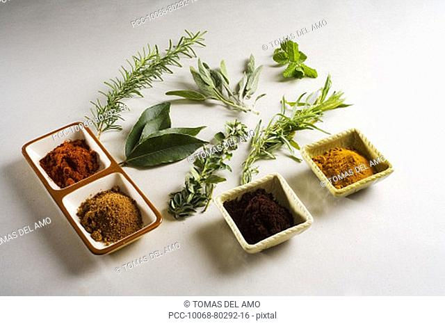 Barbecue scene, fresh herbs and spices laid out on white background