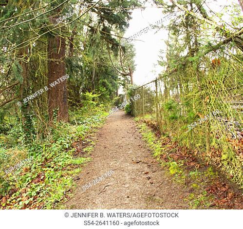 A hiking trail in Titlow Park, Tacoma, Washington, USA