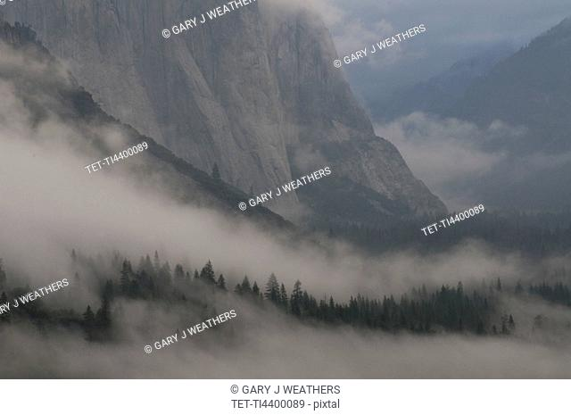 USA, California, Yosemite National Park, Mist in valley