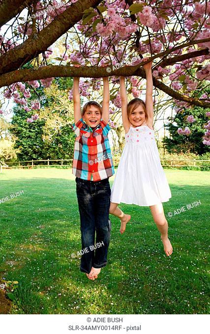 Children swinging from tree in backyard