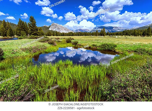 Clouds reflecting off of pond at Tuolumne Meadows. Yosemite National Park, California, United States