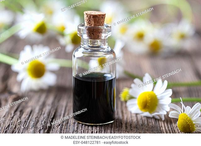 A bottle of dark blue German chamomile essential oil and fresh flowers in the background