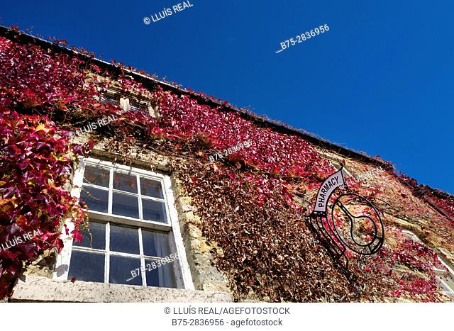 """Facade with a window, vine with reddish leaves and """"Pharmacy"""" sign.Masham, North Yorkshire, Yorkshire Dales, Skipton, UK"""