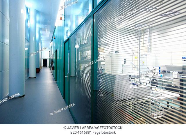 Laboratories corridor, CIC nanoGUNE, Nanoscience Cooperative Research Center, Donostia, San Sebastian, Gipuzkoa, Basque country, Spain
