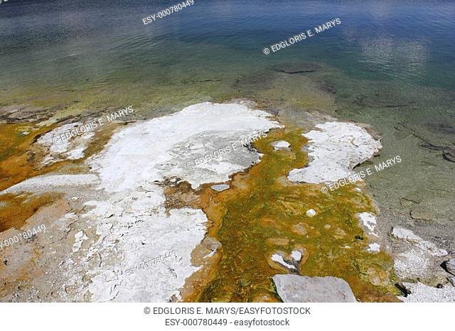 Bacterial mats among Yellowstone Lake West Thumb Geyser Basin, Yellowstone National Park, Wyoming, USA