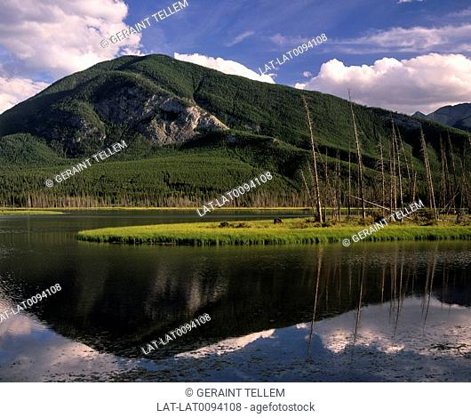 The Vermilion Lakes are a group of waterways filled with water from surrounding peaks such as Mount Rundle. They are part of the Banff national park