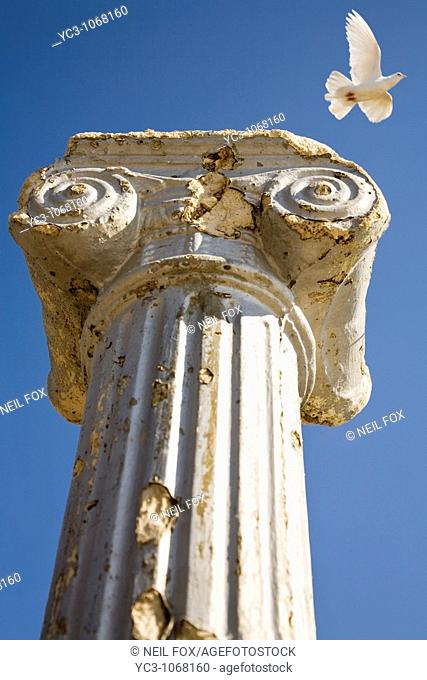 Column with bird