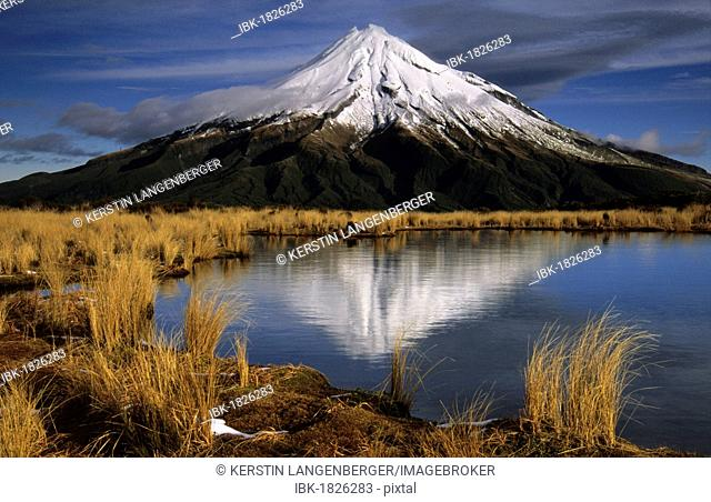 Reflection of Mount Taranaki in the Pouakai Tarns, Taranaki, Mount Egmont National Park, North Island, New Zealand