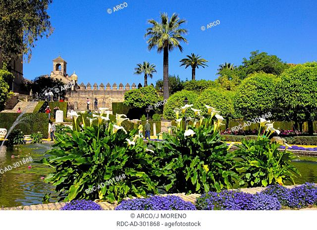 Pond, garden of Alcazar de los Reyes Cristianos, Cordoba, Andalusia, Spain / Alcazar of the Christian Monarchs, Alcazar of the Catholic Kings