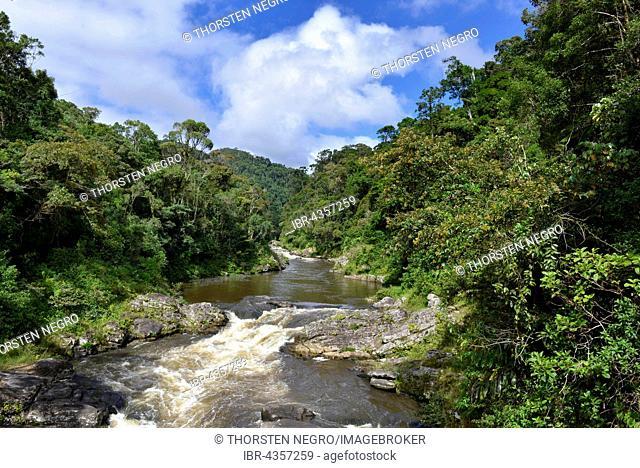 River meander, rainforest, Ranomafana National Park, Southern Highlands, Madagascar
