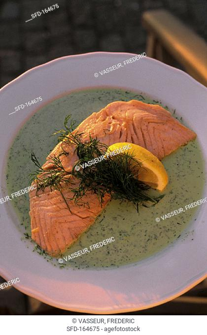 Grilled salmon on dill sauce (2)