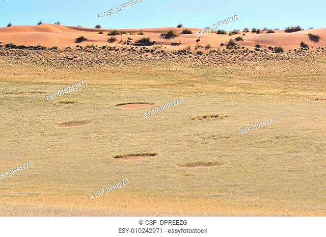 Fairy circles near Sesriem