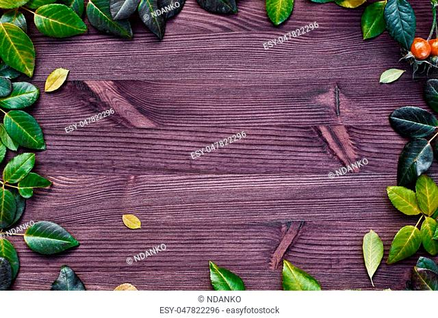 Wooden brown background with green and yellow leaves, the empty space in the middle