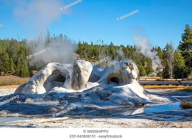 Castle geyser in the Yellowstone national park, USA