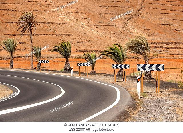 Empty road with traffic signs, Fuerteventura, Canary Islands, Spain, Europe