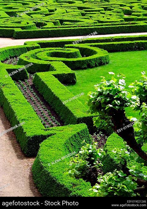 Park of castle - Czech republic Dobris