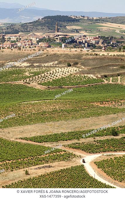 View of Briones village and crops from San Vicente de la Sonsierra, Rioja Alta, La Rioja, Spain