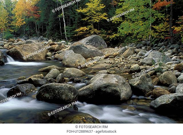NH, Glen House, New Hampshire, White Mountain National Forest, Colorful fall foliage along the Peabody River in the White Mountain Nat'l Forest in autumn