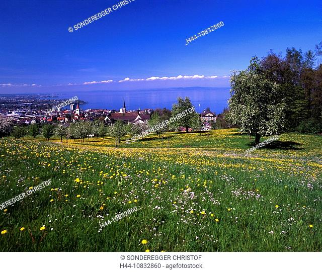 Switzerland, Europe, Lake Constance, above Rorschach, Canton St.Gallen, Landscape, Water, Panoramic view, Spring, Spri