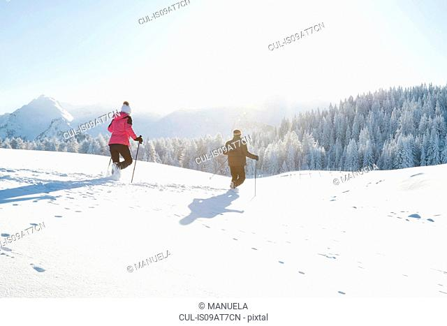 Rear view of senior couple using walking poles on snow covered landscape, Sattelbergalm, Tyrol, Austria