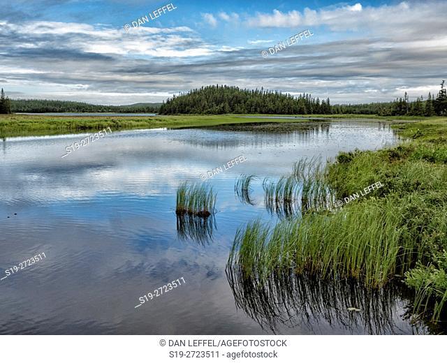 Newfoundland Canada River