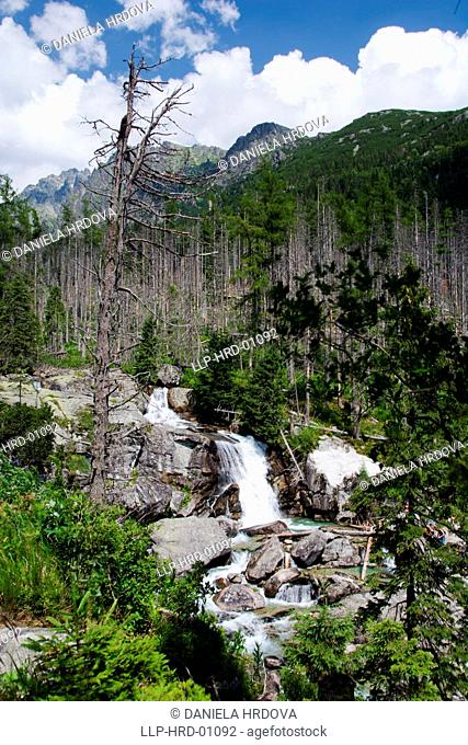 Tatra National Park, Slovakia, Waterfalls of the Cold Brook