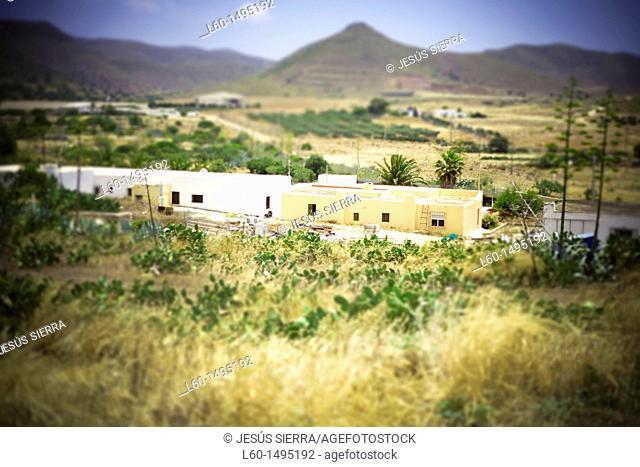 Los Albaricoques, Cabo de Gata, Almeria Province, Andalusia , Spain