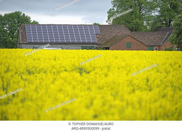 Old farmhouse with solar power and a field planted with rapeseed for biofuel