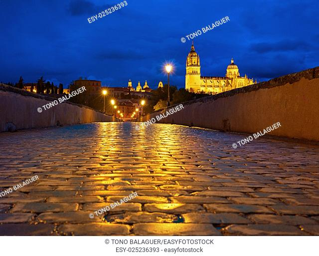 Salamanca skyline sunset and roman bridge cobblestone over Tormes river in Spain