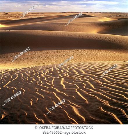 Ténéré desert. Argelia