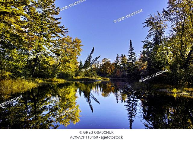 Fall colours, Bonnechere River, Bonnechere Provincial Park, Ontario, Canada
