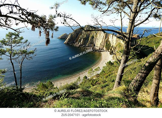 The Playa del Silencio, also known as The Gavieru, is located in the municipality of Cudillero, Asturias, Spain