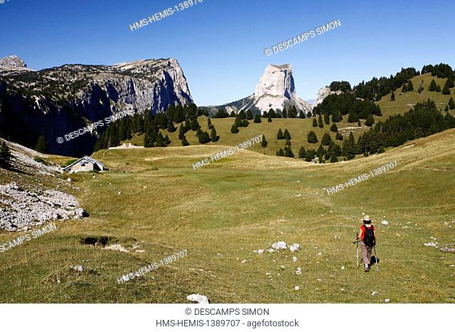 France, Isere, Parc Naturel Regional du Vercors (Natural regional park of Vercors), female hiker walking on the high plateaus of Vercors