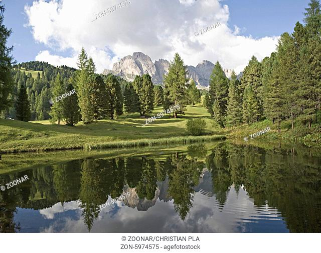 alpine lake with forest and dolomites